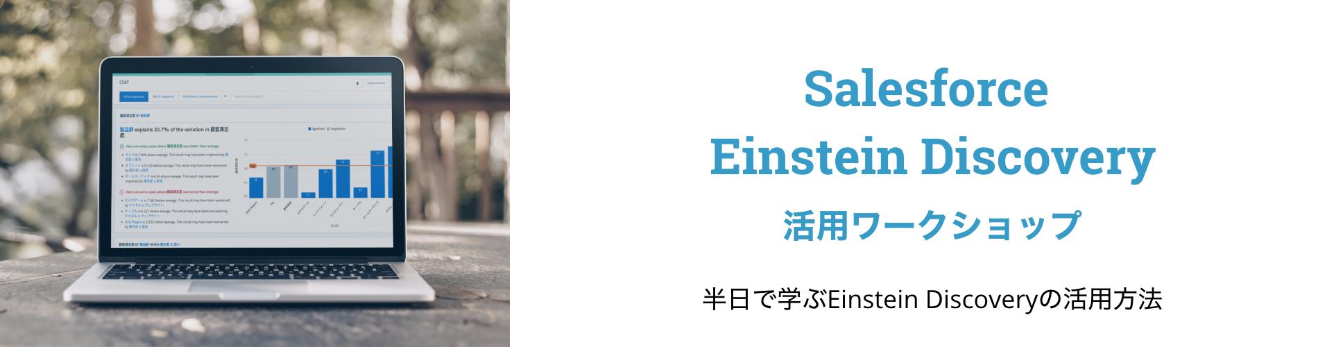 Einstein活用ワークショップ